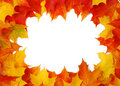 Fall Leaves Stock Photo - 10176240