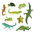 Reptiles And Amphibians Set Of Vector Illustrations Royalty Free Stock Photo - 101701695
