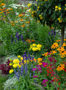 Flowerbed Royalty Free Stock Photos - 10181858