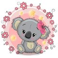 Greeting Card Koala With Flowers Stock Photography - 101930742