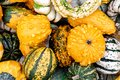 Background Of Different Decorative Small Pumpkins. Stock Photography - 101939612