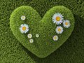 Abstract One Heart In Grass Royalty Free Stock Image - 101942026