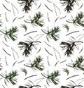 Seamless Pattern With Pine Branches, Vector Background With Needles. Nature Graphic Texture Royalty Free Stock Photos - 101950088