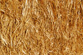 Straw Stock Images - 10209794