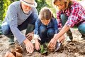 Senior Couple With Grandaughter Gardening In The Backyard Garden Royalty Free Stock Photo - 102014655