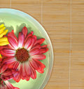 Floating Flowers On Spa Bamboo Mat Royalty Free Stock Photos - 10238978