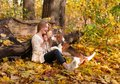 Beautiful Girl With Dog In The Park. Royalty Free Stock Images - 102408939
