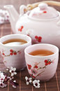 Green Tea Set Royalty Free Stock Photography - 10263217