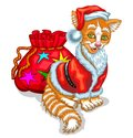 Cat Santa Claus With A Bag Of Gifts Stock Photos - 102738603