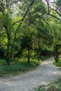 The Path Stock Image - 102751731