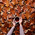Floral Autumn Background. A Mug Of Coffee In A Woman`s Hands In A Sweater On The Fallen Orange Leaves Of Oak Background Stock Photo - 102992860
