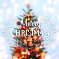 Christmas Tree Background And Christmas Decorations With Blurred Stock Images - 103090464