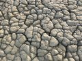 Texture Of Dry Mud Near Muddy Volcano Royalty Free Stock Image - 103102826