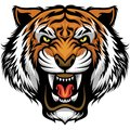 Angry Tiger Face Royalty Free Stock Photography - 103105197