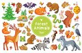 Vector Set With Animals And Birds In A Children`s Style. Royalty Free Stock Image - 103198836