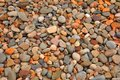 Pebble Background Royalty Free Stock Photography - 10335737