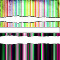 Colorful Torn Paper Royalty Free Stock Image - 10347176