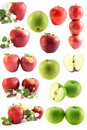 Apples Royalty Free Stock Images - 10365749