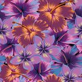 Plumeria Hibiscus Abstract Color Seamless Royalty Free Stock Images - 103716709