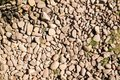 Brown Stone On A Ground Floor With Some Weed Royalty Free Stock Images - 103900389
