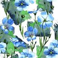 Wildflower Flax Pattern In A Watercolor Style. Royalty Free Stock Images - 103961779