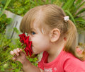 Little Girl Smelling Rose Stock Photography - 10409662