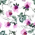 Watercolor Seamless Pattern With Colorful Flowers And Leaves On White Background, Watercolor Floral Pattern, Flowers In Royalty Free Stock Images - 104257309
