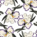Watercolor Seamless Pattern With Colorful Flowers And Leaves On White Background, Watercolor Floral Pattern, Flowers In Stock Photo - 104257430