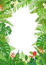 Colorful Frame With Tropical Plants Royalty Free Stock Photo - 104316505