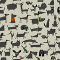 Cute Dogs Collection, Seamless Pattern For Your Design Stock Photography - 104459992