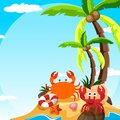Scene With Crab And Hermit Crab On Island Royalty Free Stock Photo - 104640425