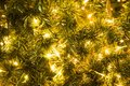 Christmas Glod Ball On The Branches Fir Glowing Garland , Christmas Or New Year`s Background. Stock Photo - 104641960