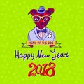 Happy 2018, Year Of The Dog. Dog On Green Background. New Year`s Greeting Card. Stock Photos - 104855753