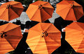 Umbrellas In Summer Royalty Free Stock Photo - 10499215