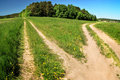 Crossroad At The Meadow Royalty Free Stock Images - 10503819