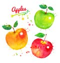 Watercolor Illustration Set Of Apples Stock Photo - 105004870