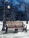 Bench And Lantern In Winter Stock Photos - 105060243