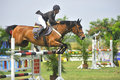 Equestrian Show Jumping Stock Photo - 10512380