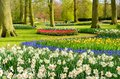 Formal Spring Garden Royalty Free Stock Images - 105175719