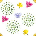 Spring Flowers Seamless Background Pattern Royalty Free Stock Photos - 105312588
