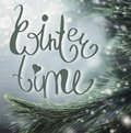 Wonderful Winter Background With Fir Branches, Snow And Winter Time Lettering. Royalty Free Stock Image - 105567566