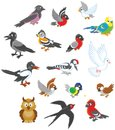 Set Of Birds Stock Images - 105593084