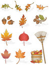Autumn Leaves Royalty Free Stock Image - 10565556
