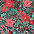 Elegant Christmas Festive Seamless Pattern With Green And Red Traditional Holiday Natural Decorations On Dark Background Royalty Free Stock Photos - 105700548
