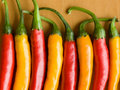 Chili Peppers Royalty Free Stock Image - 10581966