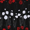 Seamless Pattern Of White And Deep Red Flowers Of Poppy On The Black Background. Watercolor - 2 Stock Images - 105875574