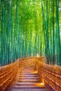 Bamboo Forest In Kyoto, Japan Royalty Free Stock Photo - 106095155