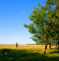 Man In The Field Stock Images - 10612324