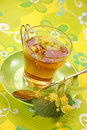 Linden Tea Stock Photography - 10623312
