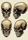 Set Of Skull In Detailed Style Royalty Free Stock Images - 106421349